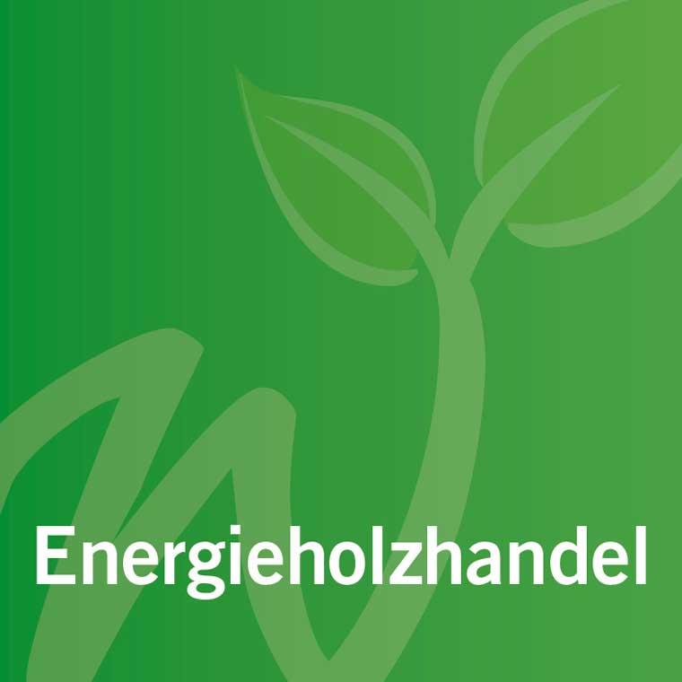 leistungen_energieholzhandel